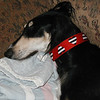 Albi wearing Reversible Heart Stripe, black and red
