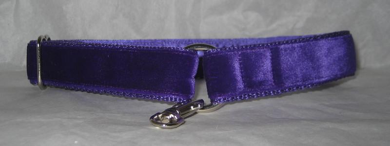 "Swiss velvet plum 1"" wide style #1 greyhound tag collar (plum on purple webbing with purple lining)"