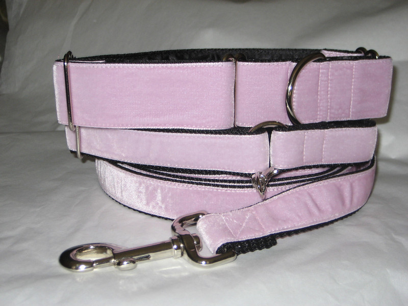 """Swiss Velvet Baby Pink, 1 1/2"""" wide martingale, greyhound tag collar and 6' leash shown"""
