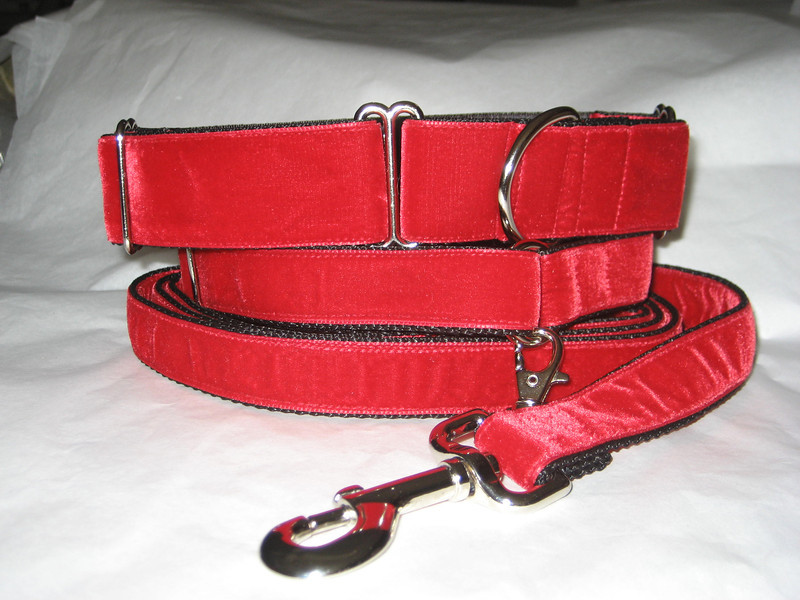 """Swiss Velvet Scarlet, 1 1/2"""" wide martingale, greyhound tag collar and 6' leash shown"""