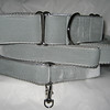 """Swiss Velvet Silver, 1 1/2"""" wide martingale, leash and greyhound style #1 tag collar shown"""