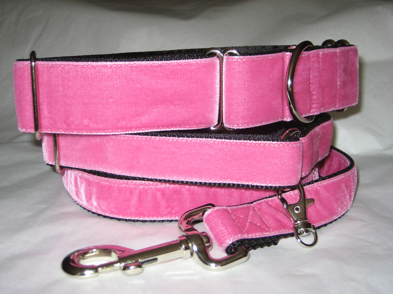 """Swiss Velvet Hot Pink, 1 1/2"""" wide martingale, greyhound tag collar and 6' leash shown"""