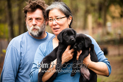 Gordon Webber's Black Lab Puppies