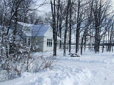 Winter in Toldinwood, Michigan