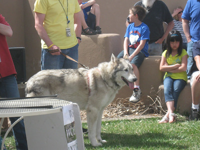Wolf Meet & Greet 3-25-12