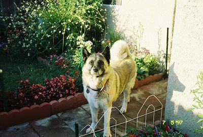 July 1997. La Puente, CA