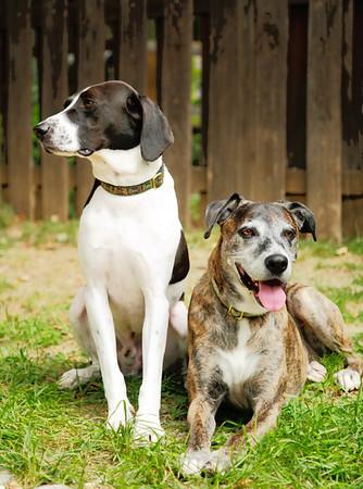 Zoie & Rooney