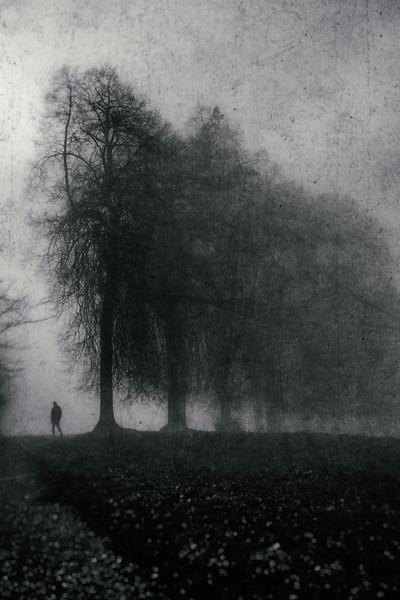 Nebel-.jpg