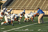 Panthers_40017