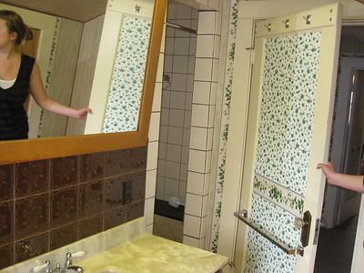 the shower - hidden by the door when its open