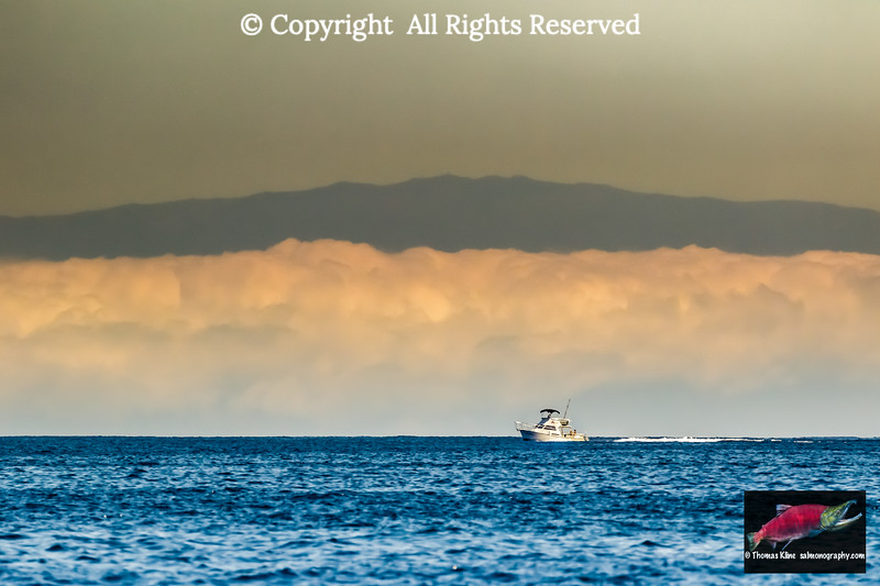 A sportfishing boat passes a morning fogbank