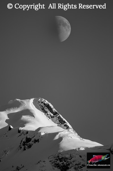 Winter moon and ski tracks