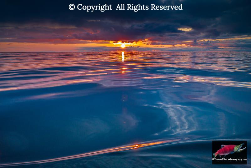 Gulf of Alaska sunset