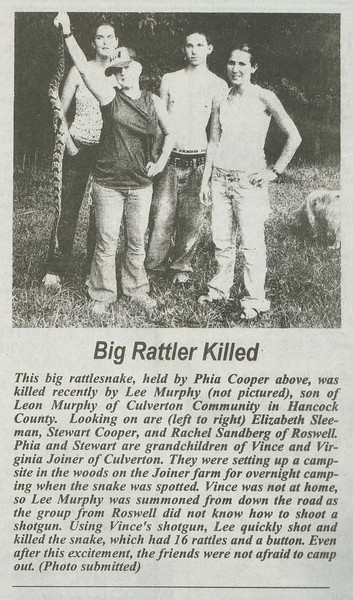 Big Rattler Killed, 2004, found by Stew, displayed by Phia