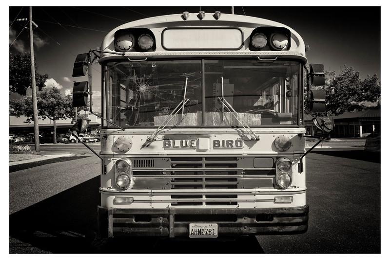 School Bus (3 of 3)