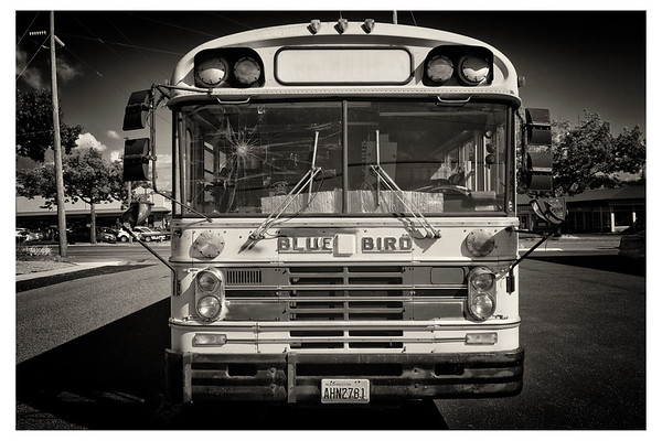 School Bus (3 of 3)