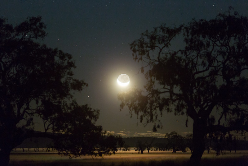 Misty Moonset