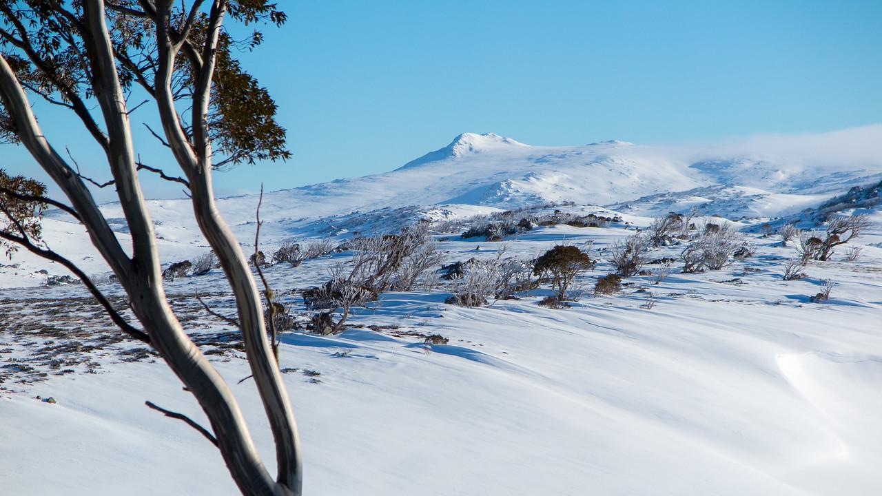 Mount Jagungal from Mawson Hut (8km away)