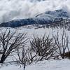 Mt McKay