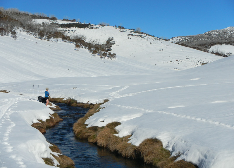 Bogong Creek valley before O'Keefe's Hut