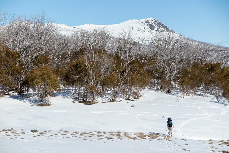 Mount Jagungal