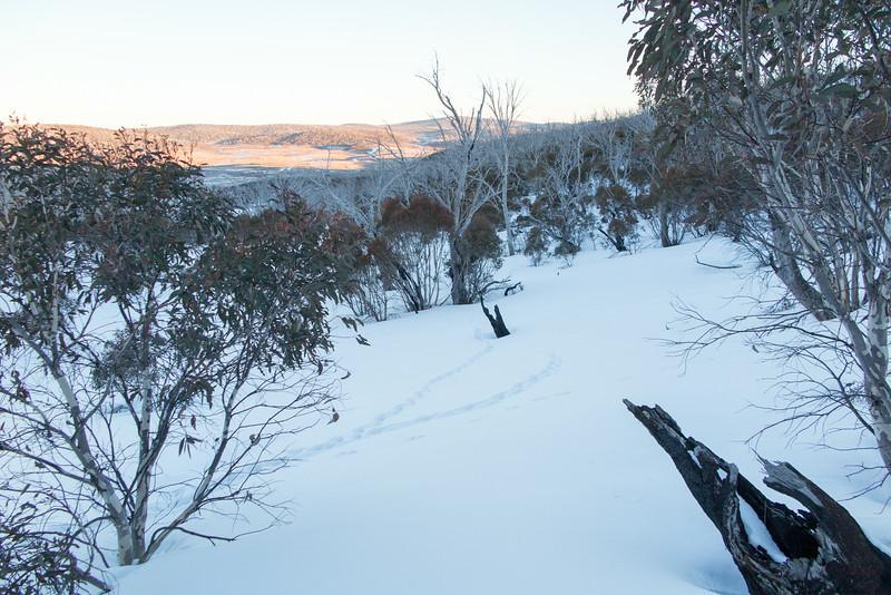 East side of Arsenic Ridge