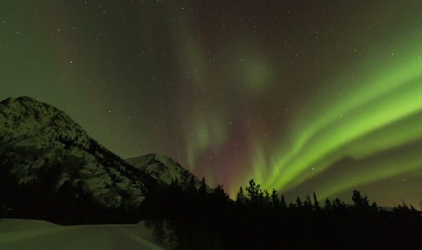 Yukon Adventures Week 3