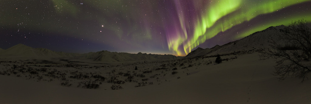Yukon Adventures Week 9
