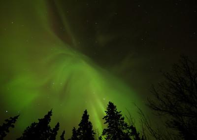 Yukon Adventures Week 1