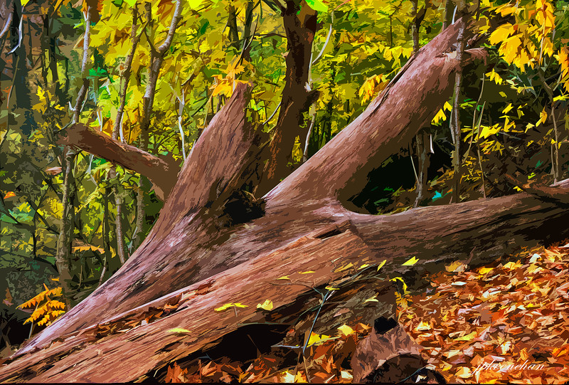 Fallen Tree in Valley Green (with Artist's painting effect)