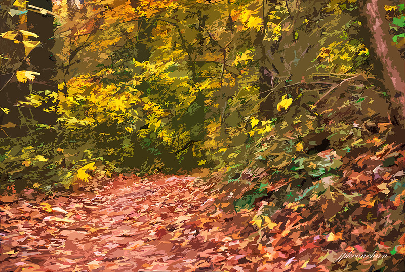 A Leafy Trail in Valley Green