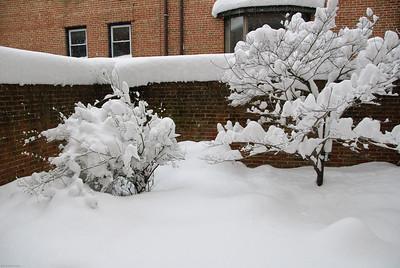 The big snowstorm