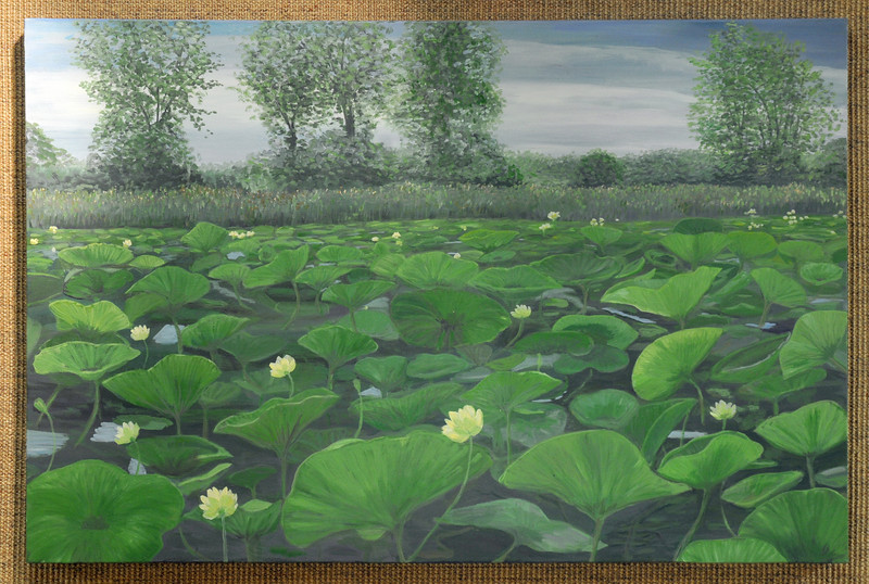 Artist: Theresa Lannen<br /> Title: American Lotus in Bloom<br /> Medium: Oil on Canvas