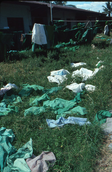 It was a sunny day. The grass is clean. So why not dry the linen on it?