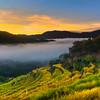 Sunrise @ Maligcong Rice Terraces, Mt. Province