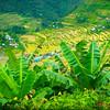 Batad Rice Terraces & Village