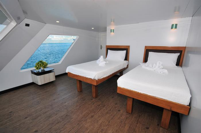 Cabin with twin beds, Discovery Adventure Liveaboard