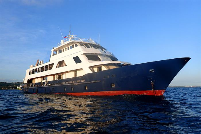 MV Discovery Adventure Liveaboard Review