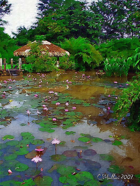 Hut across the Lily Pond