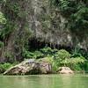 Nature around the river