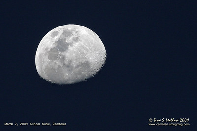 Moon shot taken right after our birding sortie.  What a nice way to end the day :)