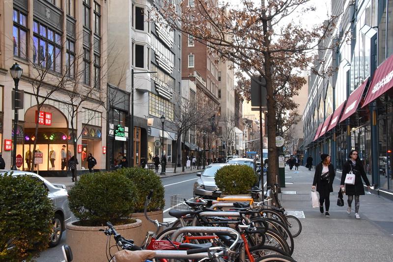 1600 Block of Chestnut Street -2020