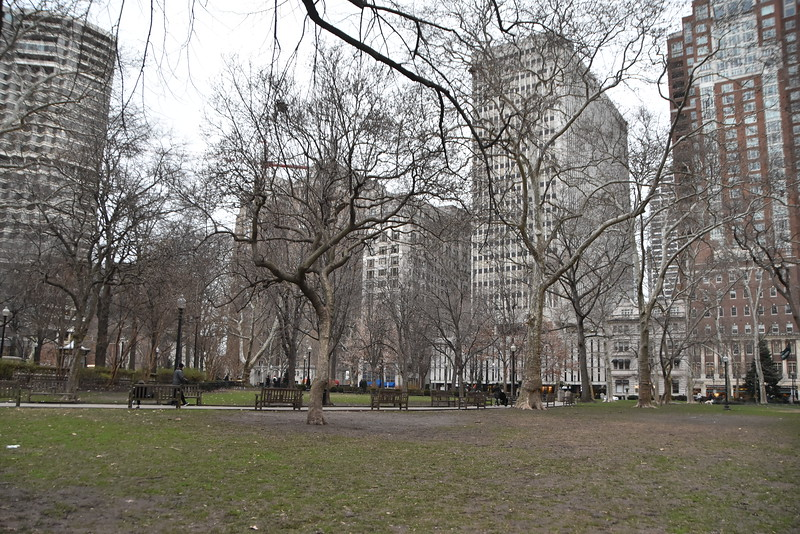 Rittenhouse Square in January