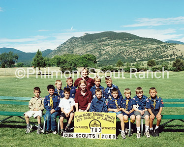20000703_PTC_CUBSCOUTS1_2