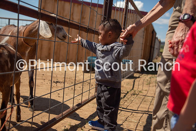 A PTC participant reaches out to pet a goat at the Philmont Training Center in Cimarron, New Mexico on Thursday, July 25, 2019.