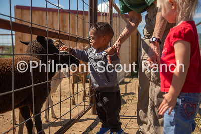 A PTC participant pets a goat at the Philmont Training Center in Cimarron, New Mexico on Thursday, July 25, 2019.