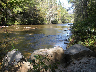 Chattooga River Burrell's Ford Campground