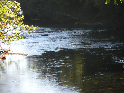 Chattooga River - Section II