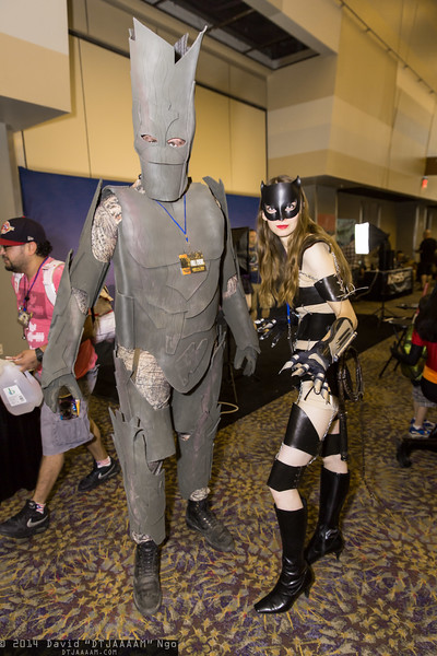 Groot and Catwoman