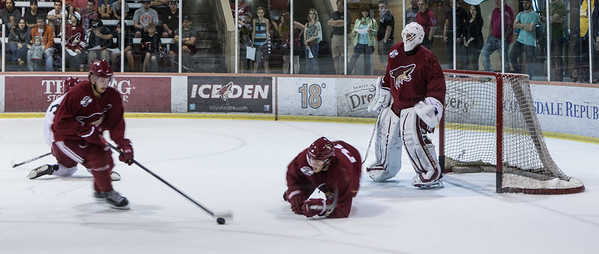 Phoenix Coyotes Prospects Camp 11 July 2013 -006